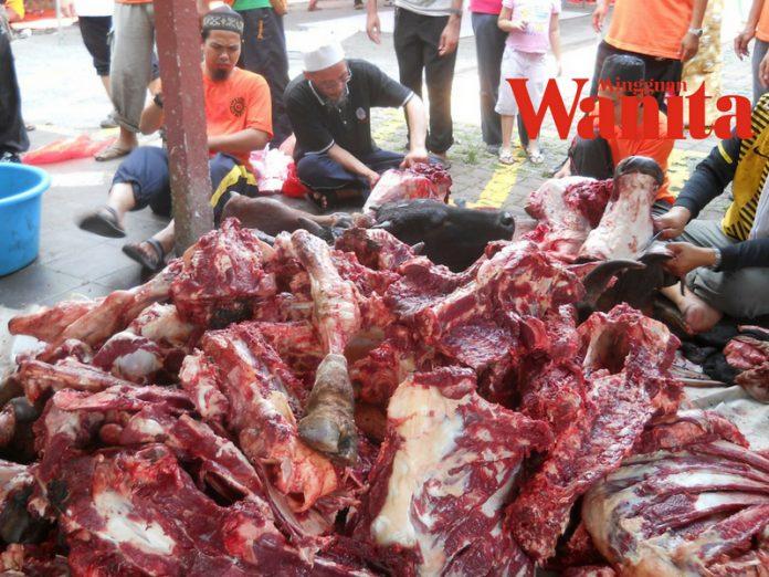 daging korban
